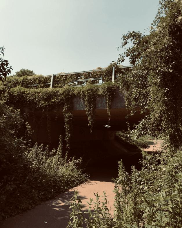 Makilo Approach