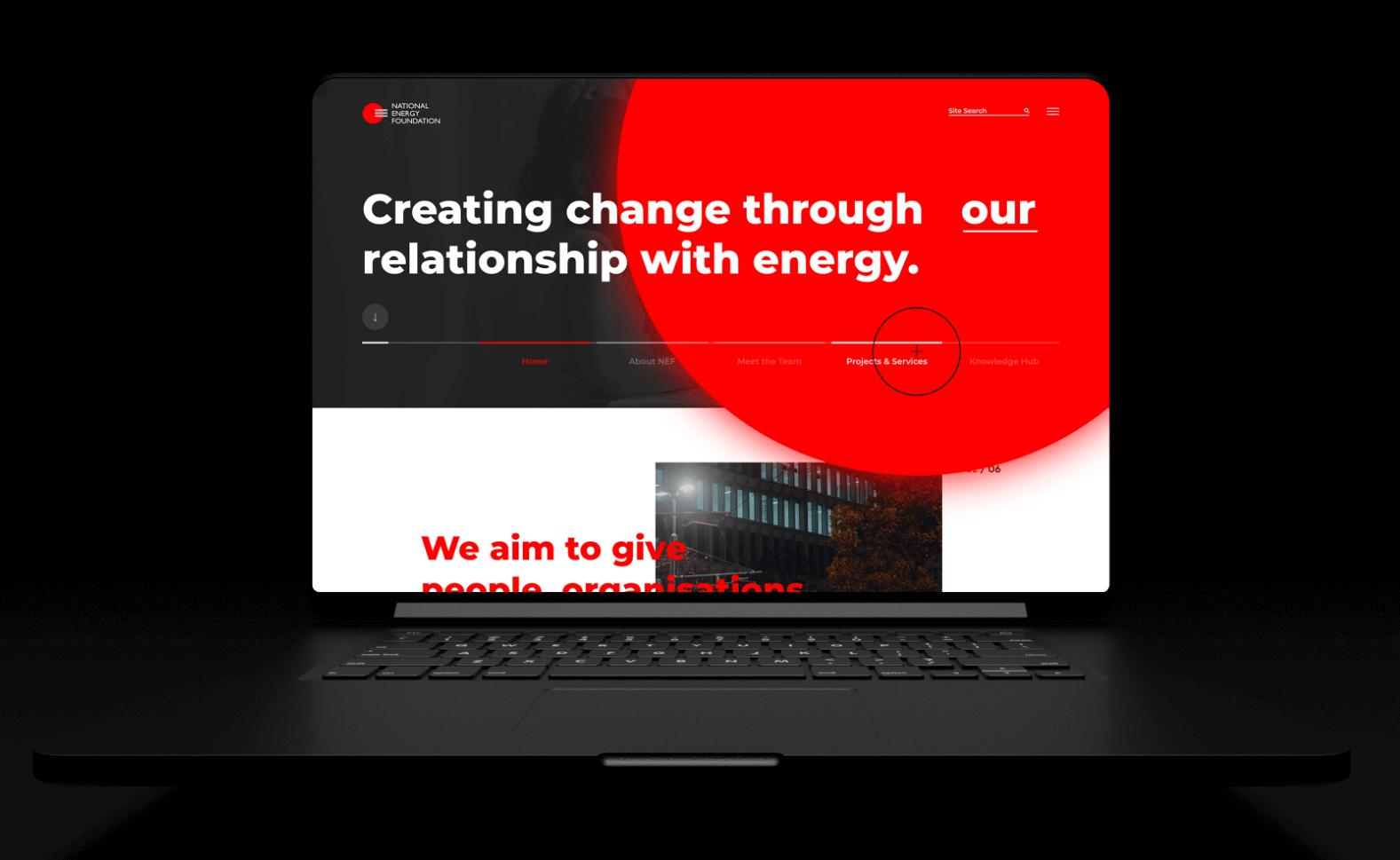 The National Energy Foundation